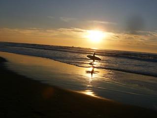 surfer in san fransisco