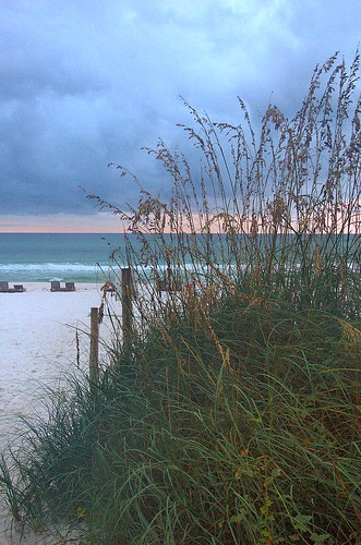 pictures pink autumn usa fall gulfofmexico rose sunrise photo florida empty environment after fl sands panamacitybeach baycounty 2010 seaoats gulfcoast replanted stormoverthegulf bpoilspill copyrightbrianbrown relativecalm worldsmostbeautifulbeaches
