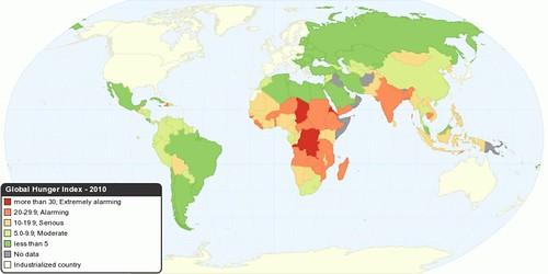 Global Hunger Index - 2010
