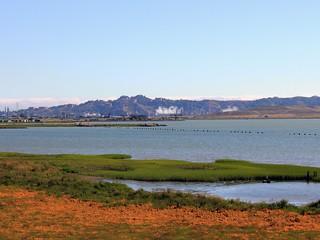 Berkeley View from Point Pinole Regional Shoreline   by imwilliam