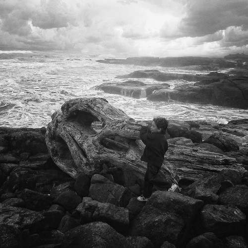 ocean blackandwhite clouds square driftwood shaefer ruggedcoast lilshaefer