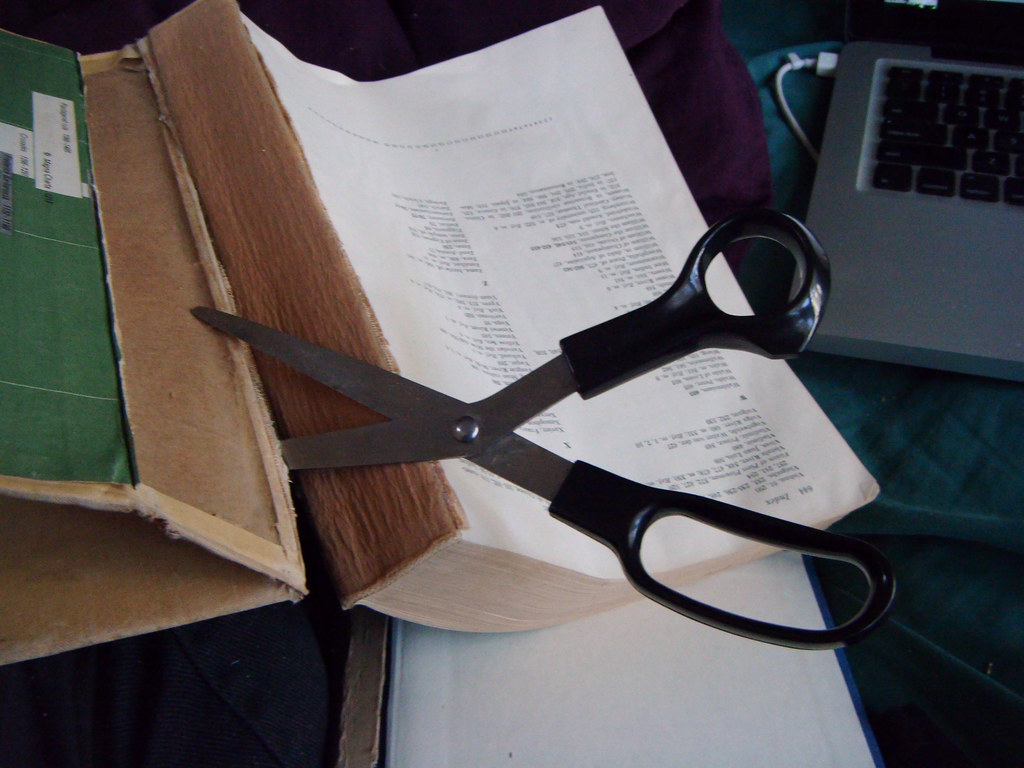 cutting up a book | Liz Henry | Flickr