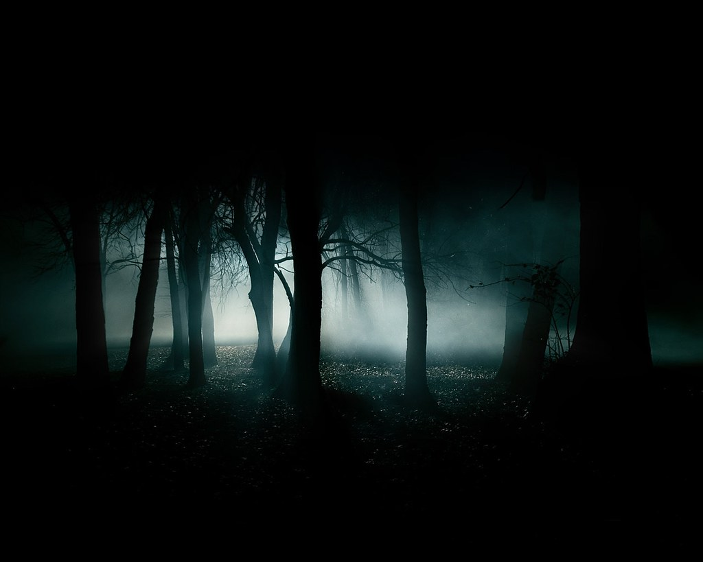 1080p dark forest hd