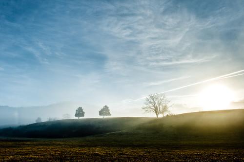 morning trees sky sun mist field clouds sunrise hdr