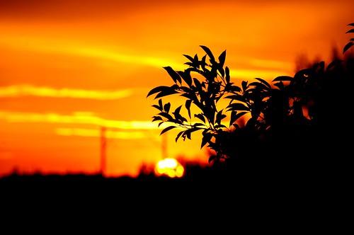 Sunset | by Kamil Porembiński