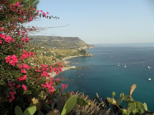 senza bouganville non è Calabria | by dplastino