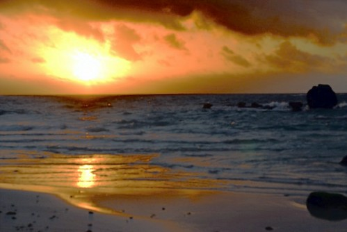 sunrise bermuda