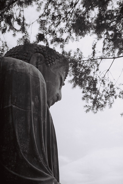Great Buddha Kōtoku-in Kamkura, 鎌倉大仏