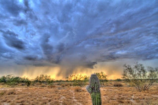 Arizona Monsoon | by Casey Myers Photography