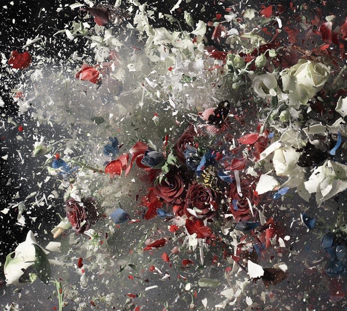 Ori Gersht : Blow Up detail   Capture 3 Shutter Speed : 1/60