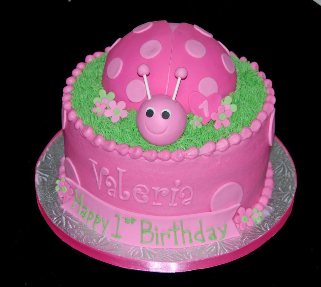 Awe Inspiring 1St Birthday Pink Ladybug Cake Dana Brown Flickr Funny Birthday Cards Online Kookostrdamsfinfo