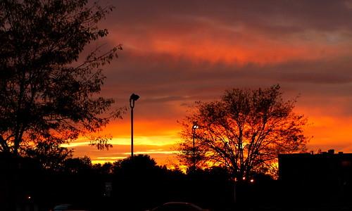 street trees sunset ohio red sky orange sun colors silhouette clouds high sundown north worthington