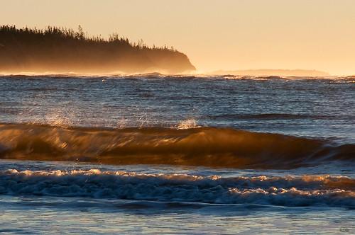ocean beach nikon ns halifax d9o