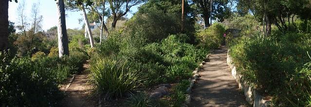 JB161312_6 101116 Santa Barbara Orpet Park lower area walkway garden area IcE rm stitch