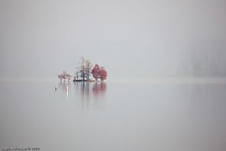 Sitting In Stillness | by Denise Worden