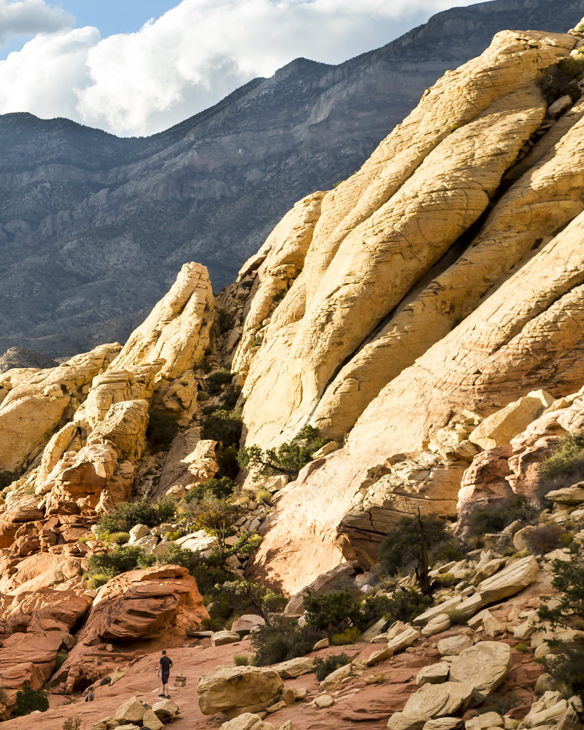Red Rock National Conservation Area: Icebox Canyon