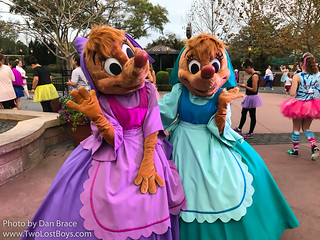 2017 Disney Princess 5K | by Disney Dan