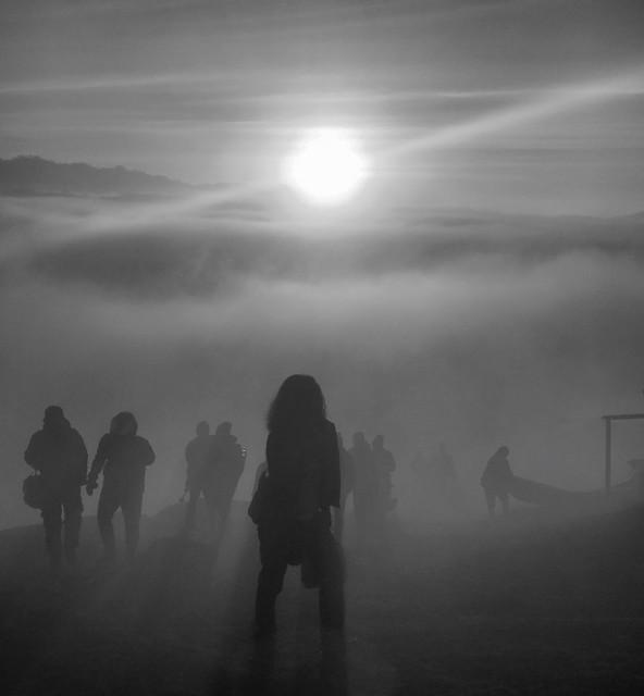Morning Star Mist