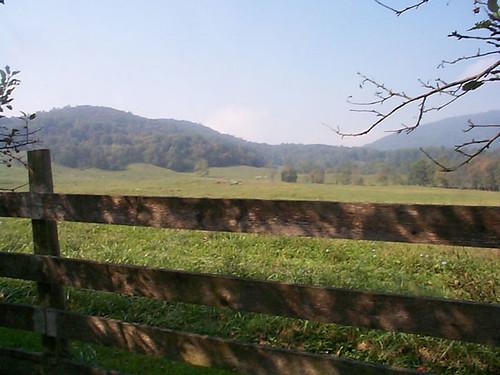 summer mountain landscape pasture littlewashington rappahannockcounty gingerhill