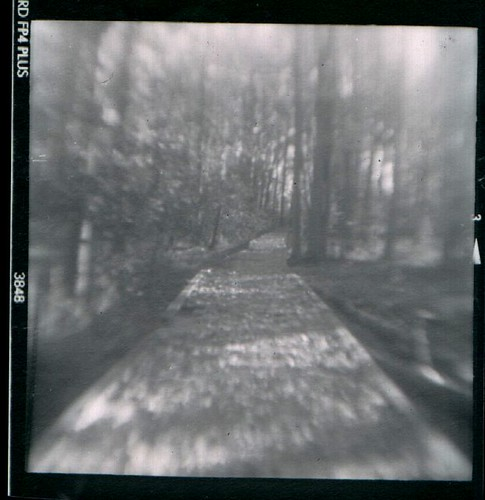 Brownie Hawkeye Flash-The enchanted forest | by cool-baby