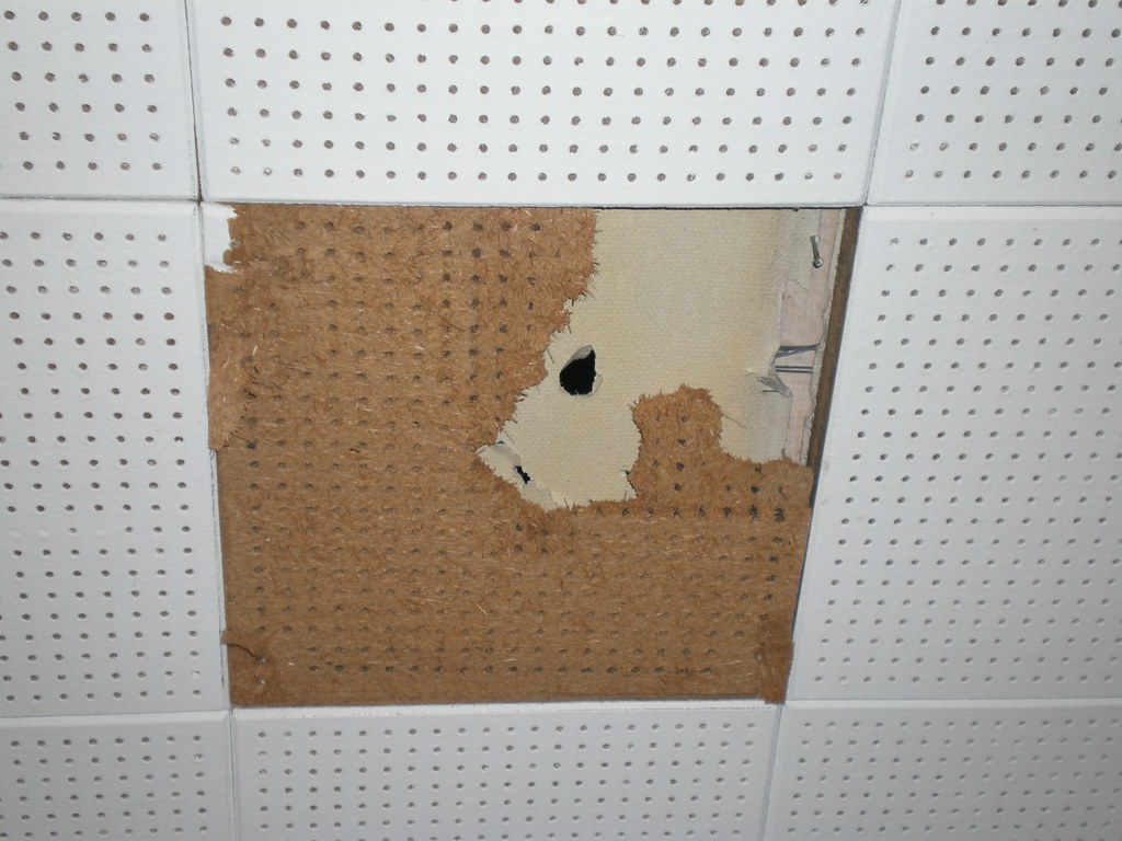 Ceiling Tile With Asbestos Paper Sub Layer View Of Non Asb Flickr