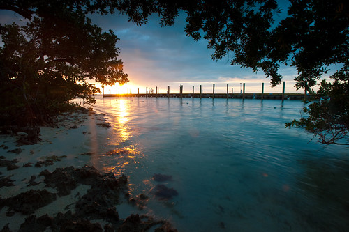 trees sunset leaves night pier aqua cloudy miami framed floridakeys warmfloridakeysmiamiocean