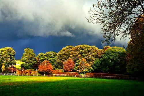 blue trees sky cloud sunlight white green field clouds sunrise fence grey dawn topf50 shadows topv444 fences shade hedge algo