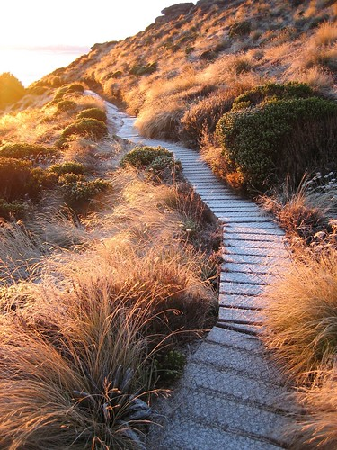 Kepler Track | by Department of Conservation