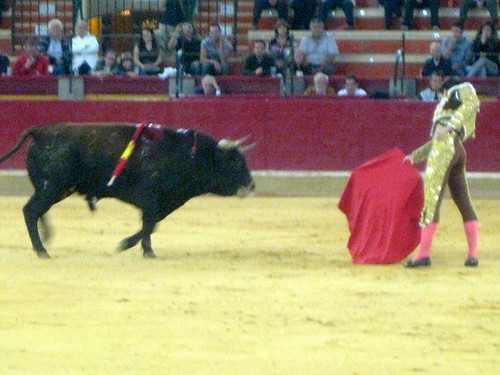Bullfighting | by jetsetwhitetrash