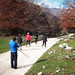 Passeggiata del 7 novembre 2010
