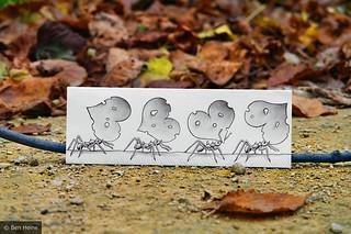 Pencil Vs Camera - 39   by Ben Heine