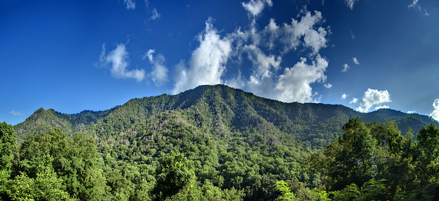 Chimney Tops, Great Smoky Mountains National Park, Sevier County, Tennessee