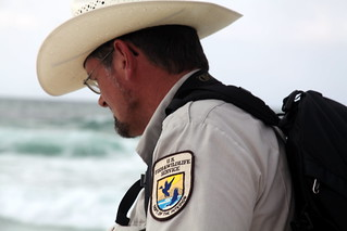 Search and capture on Pensacola Beach during oil spill response