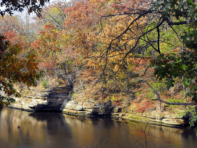 Autumn Scene Along The Wisconsin River Wisconsin Dells, WI.
