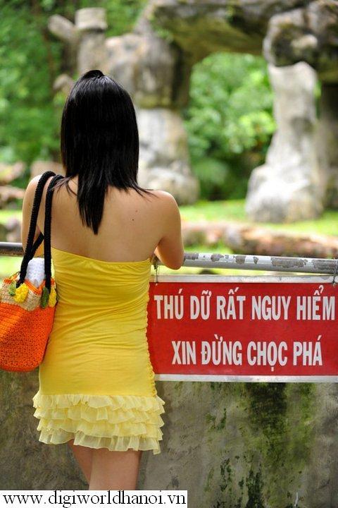 Thu du nguy hiem, xin dung choc pha _ http://digiworldhanoi.vn