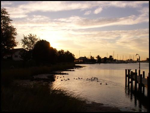 winter seascape film analog sunrise 35mm harbor pier quiet asahi pentax ducks maryland calm chesapeake mesuper solomonsmaryland citrit soligorf35452880mmzoommacrolens pentaxart