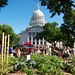 Vegetable Garden at the Capitol