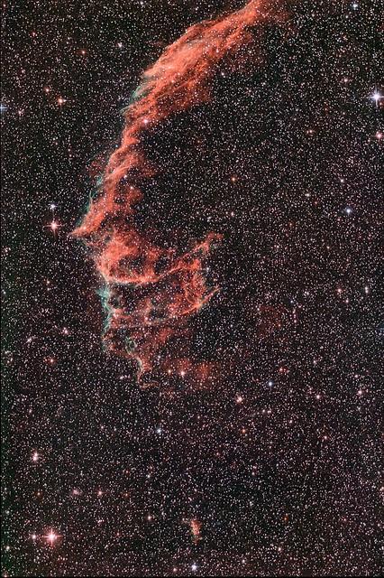 Network Nebula NGC 6995 & 6992 (re-process)
