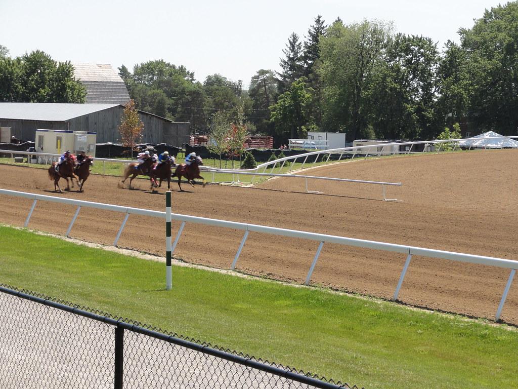 Ajax Horse Racing