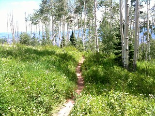 Mountain Bike Government Trail, Aspen, CO, USA | by TRAILSOURCE.COM