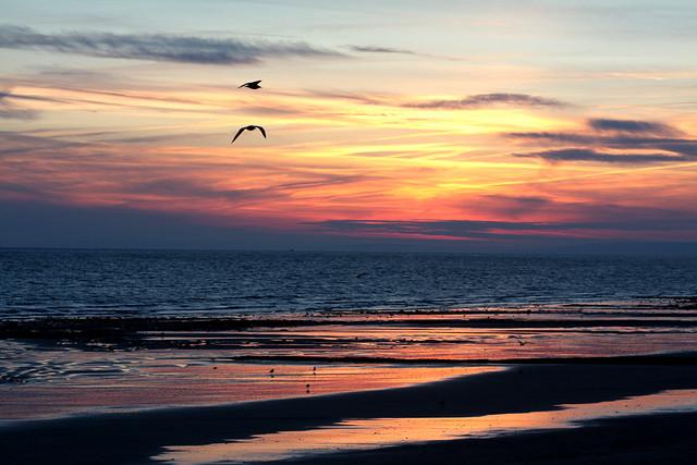 Lever de soleil, Luc sur Mer