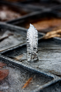 Inverted Icicle (Cobra) | by Seymour Digital Consulting, LLC