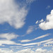 Fresh-Skies-0338