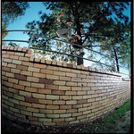 mitchell carey - smith grind