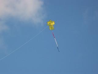 IMG_1948 Sode Dako ( Kimono kite) | by pe9ghz