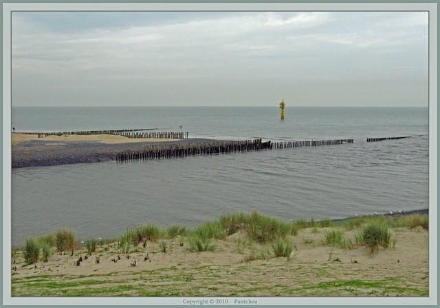 Zwin : View from Zomerdop Het Zwin  18/22