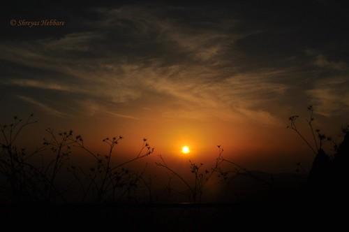 sunset sky sun india cold tree texture nature silhouette evening soft nainital uttarakhand