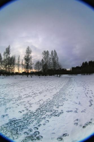 winter lake nature countryside fisheye belarus icylake canoneos30d belomomc835 vygonichy