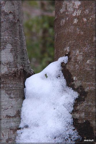 Un fantasma fet de neu - A ghost made of snow | by en menut