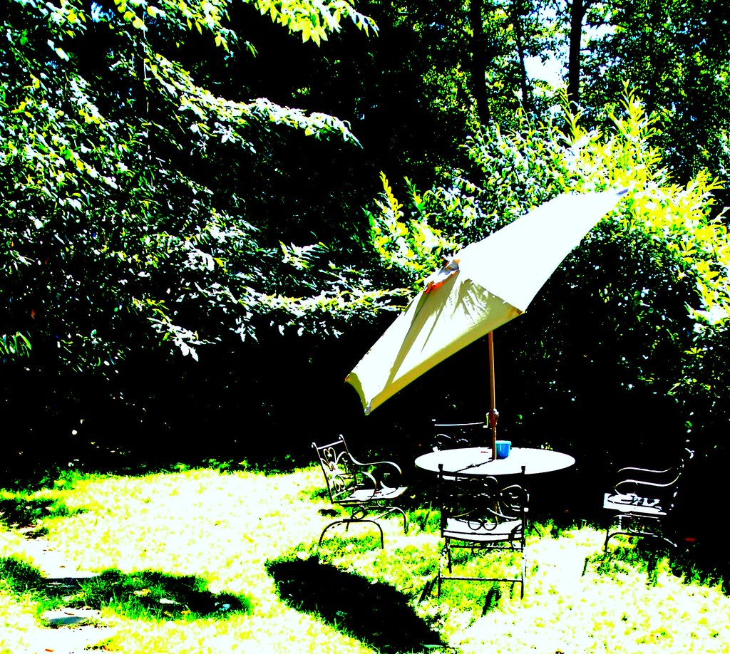 Summer in Seattle, outside patio table and umbrella, trees… | Flickr